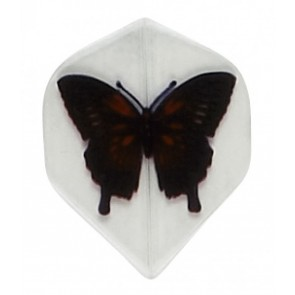 "Poly ""Schmetterling"" Fullsize Flights"